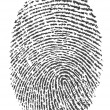 Royalty-Free Stock Photo: Finger print