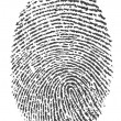 Finger print — Stock Photo #10790744