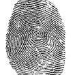 Stock Photo: Finger print