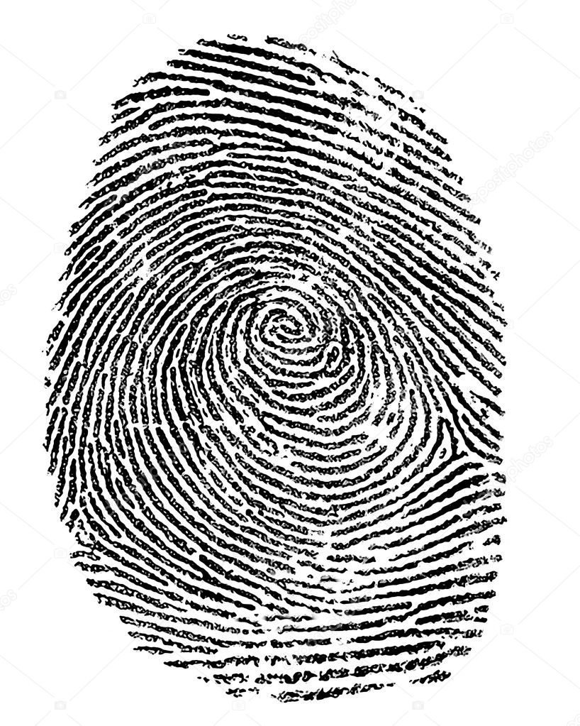 Finger print on white background — Stock Photo #10790745