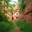Balga - ruins of medieval castle of the Teutonic knights. Kalini — Stock Photo
