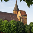 Kant&amp;#039;s cathedral in Kaliningrad - Stock Photo