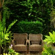 Couple chair in the garden - Stock Photo