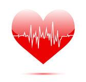 Cardiogram on heart — Stock Vector