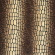 Stock Photo: Texture of snake on fabric