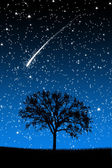 Tree Under Stars with shooting stars at night — Stock Photo