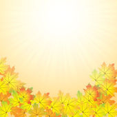 Autumn abstract background — Stock Vector