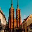 Cathedral wroclaw — Stockfoto