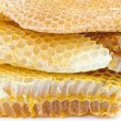 Honey comb — Stock Photo #11563951