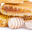 Honey comb — Stock Photo #11563985