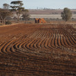 Barren wheat field Western Australia - Stock Photo