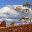 Australian outback landscape — Stock Photo #11403437