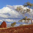 Stock Photo: Australian outback landscape