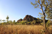 Australian outback landscape — Photo