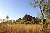 Australský outback krajina — Stock fotografie