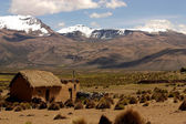 Landscape, National park Sajama, Bolivia. — Stock Photo