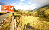 Spectacular Valle de Cocora in Colombia. — Stock fotografie