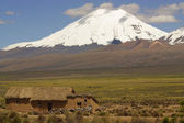 View on stone houses and volcano in Sajama, Bolivia. — Stock Photo