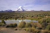 Reflection of volcano Sajama small lake, Bolivia. — Stock Photo