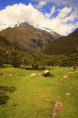 View in National park Huascaran, Peru. — Stock Photo