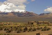 Landscape in National park Sajama, Bolivia. — Stock Photo