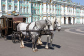 Carriage drawn by two horses — Stock Photo
