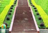 Escalier — Photo