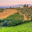 landschap in Toscane avondzon — Stockfoto