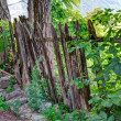 Old wooden fence edited with HDR - Stockfoto