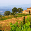 Stockfoto: Tuscan landscape panorama in evening sun
