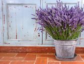 Bouquet of lavender in a rustic setting — 图库照片