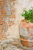 Rustic old flower pot by a brickwall — Stock Photo
