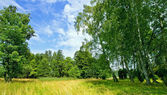 Finnish countryside landscape in the summer — Stock Photo