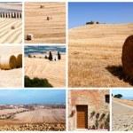 Tuscany landscape collage — Stock Photo