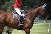 Jezdkyně v uniformě — Stock fotografie