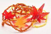 秋の装飾 — ストック写真
