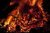 Fire woods — Stock Photo