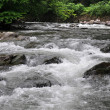 mountain river — Stock Photo #11133552