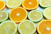 Citrus slices — Stockfoto