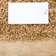 Wheat grain and tag price — Stock Photo