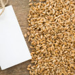 Wheat grain and tag price - Foto de Stock  