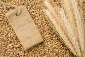 Spike of wheat and tag price — Stock Photo