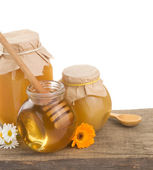 Jar of honey and stick — Stock Photo