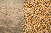 Wheat grain on wood — Stock Photo