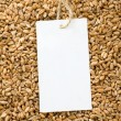 Wheat and price tag - Foto de Stock  