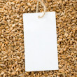 Wheat and price tag - Photo