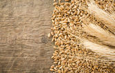Wheat grain and ear on wood — Stock Photo