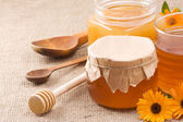 Flowery honey — Stock Photo