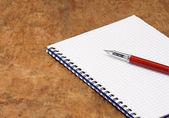 Kalem ve yastık — Stok fotoğraf