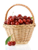 Sweet cherry in basket isolated on white — Stock Photo